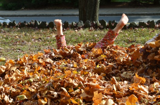 Girl in leaf pile